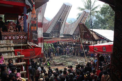 Tana Toraja Indonesia  city pictures gallery : Tempat Wisata Sulawesi{{Tanah Toraja}} – Gilang B tea